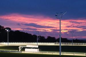 Greyhound track towcester